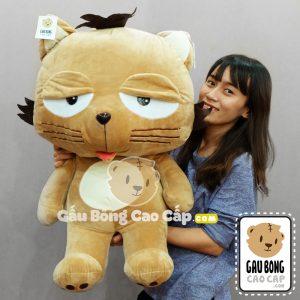 Mèo Bông Dinga
