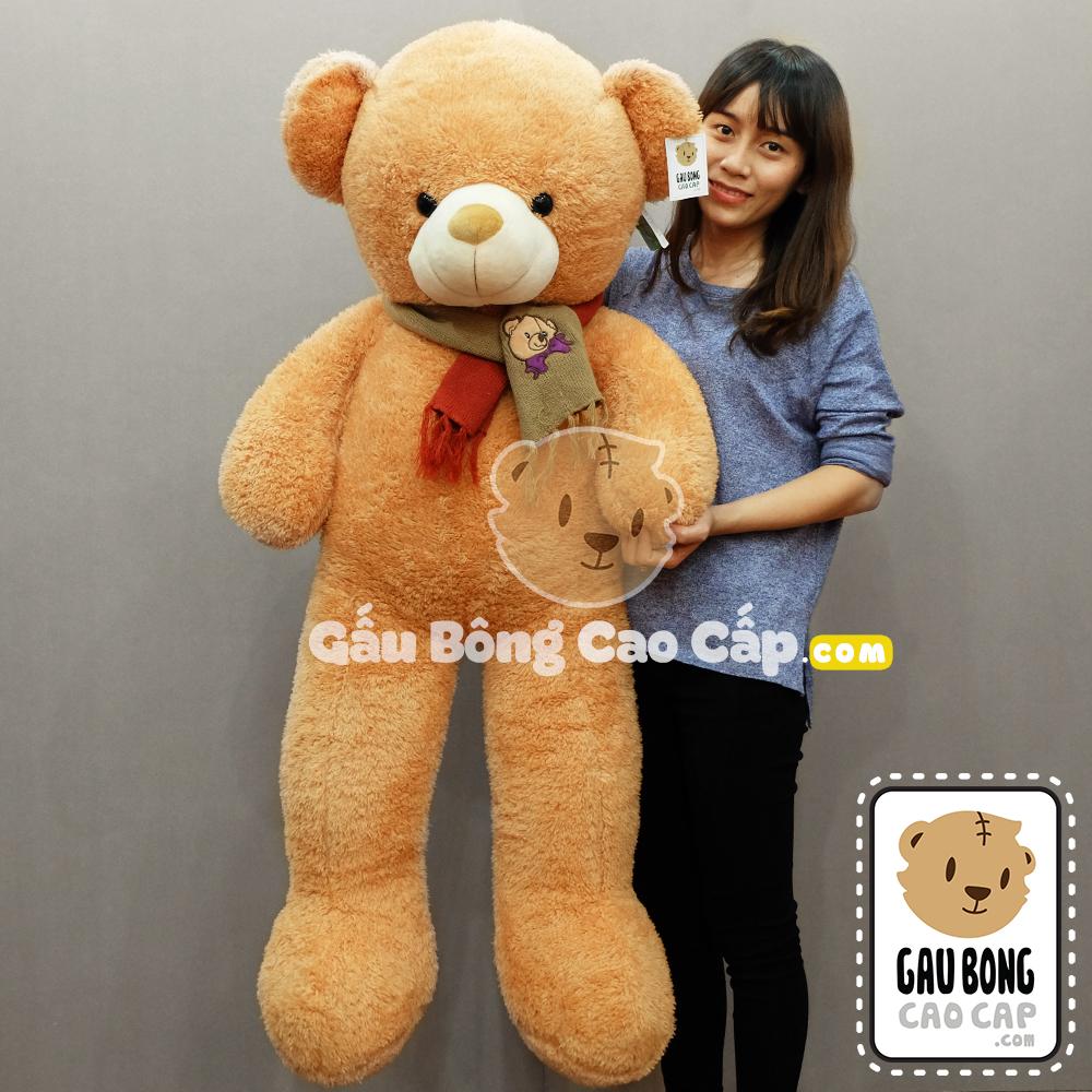 Gấu bông Teddy khăng thêu mặt Gấu