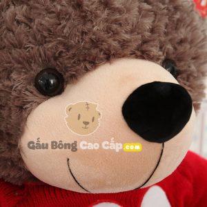 Gấu Bông Teddy áo len LOVES