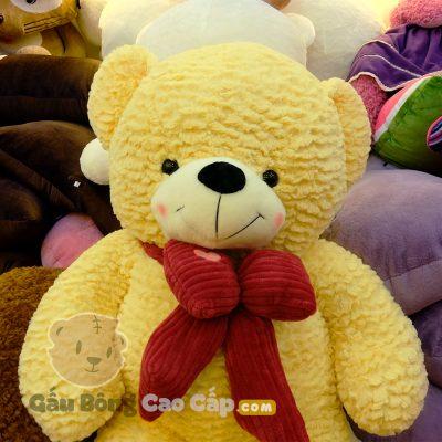 Gấu Bông Teddy nơ nhung (Lông Layer)