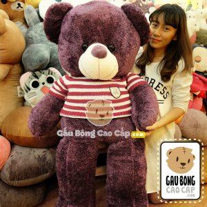 Gấu Bông Teddy áo len Tím