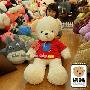 Teddy áo thun mặt gấu