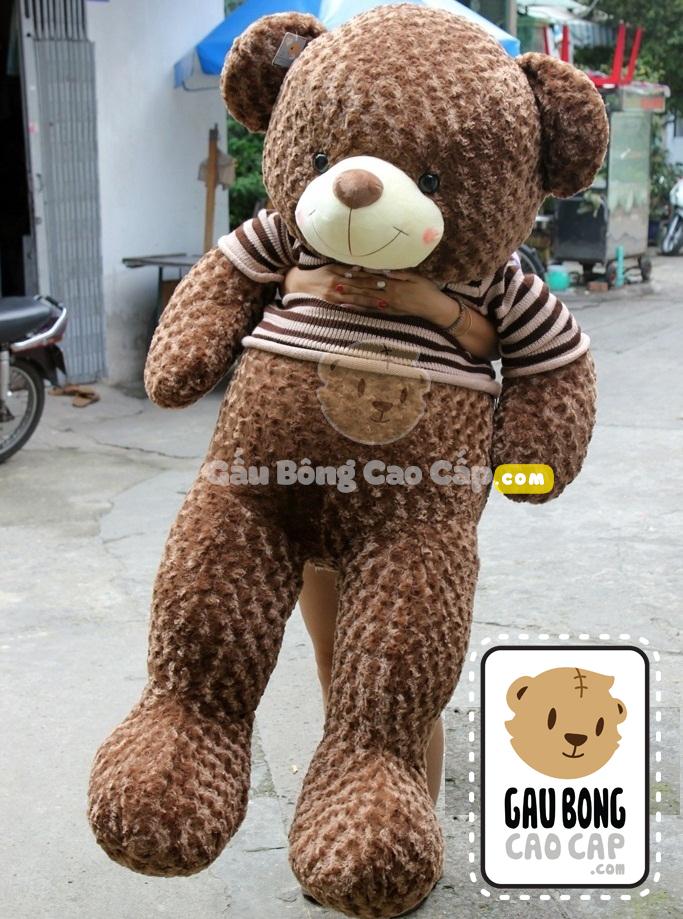 Gấu bông Teddy áo len Choco Size 1m7
