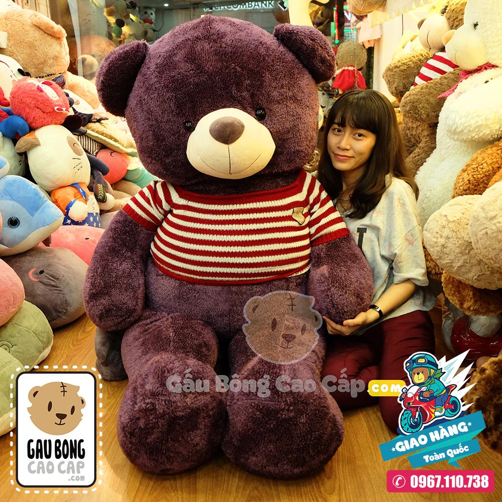 Gấu Bông Teddy tím áo len - Size: 1m8
