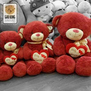 Gấu Teddy Đỏ Ôm Tim