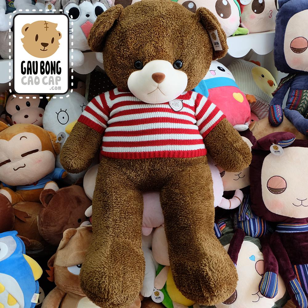 Gấu Teddy Boy Lông Sợi