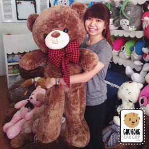 Gấu Teddy Smile nơ Caro