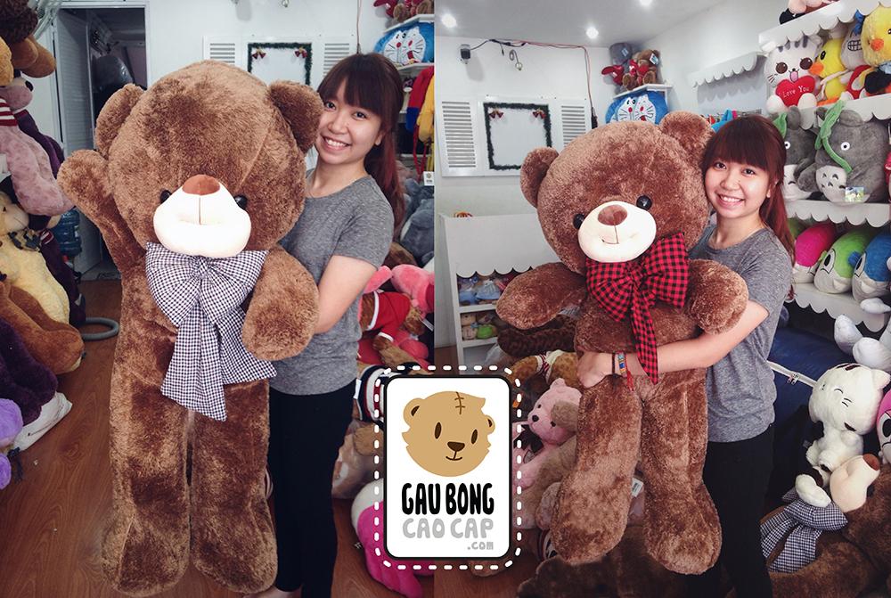 Ý nghĩa quà tặng Gấu Bông