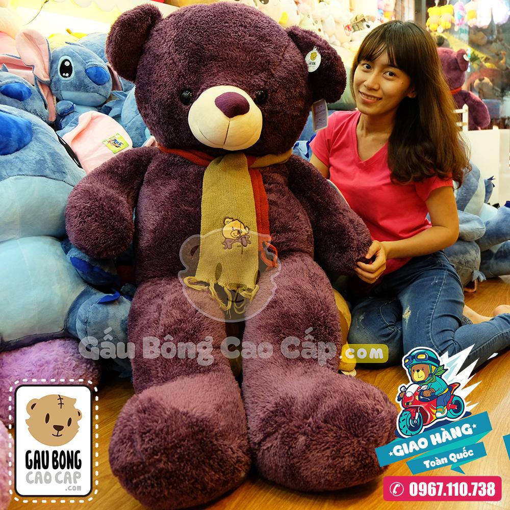 Gấu Bông Teddy tím choàng khăn