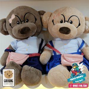 Gấu Teddy Học Sinh