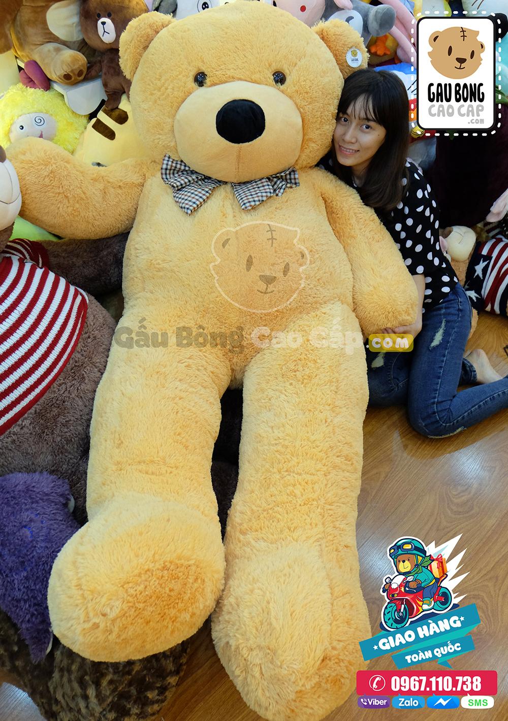 Gấu Teddy BOYDZ Nơ Caro 2m