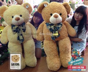 Gấu Teddy lông vàng nơ Hoa