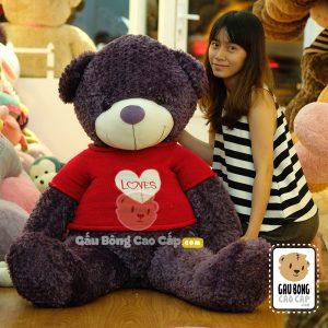 Gấu Teddy áo len LOVE