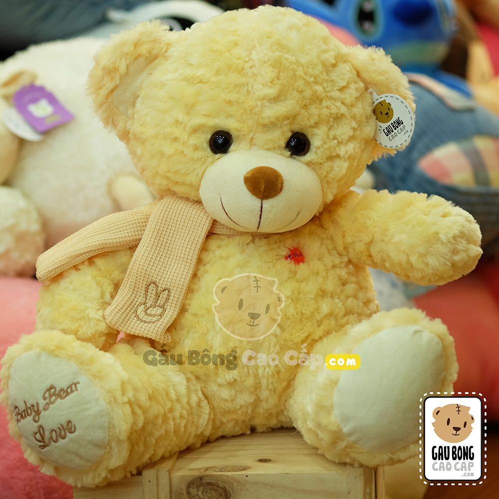Gấu Teddy lông xù choàng khăn