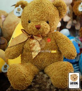 Gấu Teddy lông xù F.R.J
