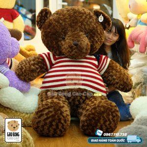 Teddy áo len cờ mỹ 1m6