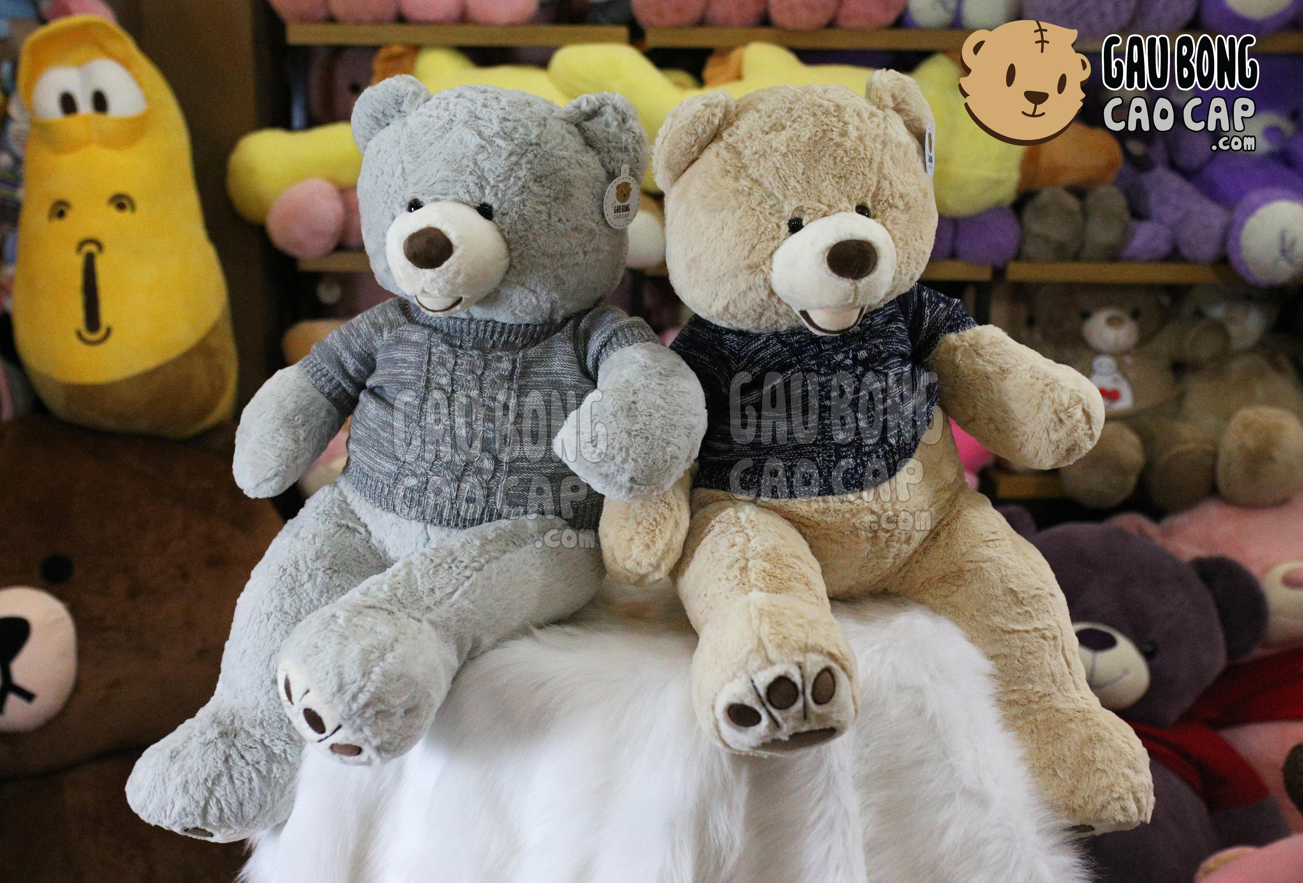 Gấu Teddy costco áo len