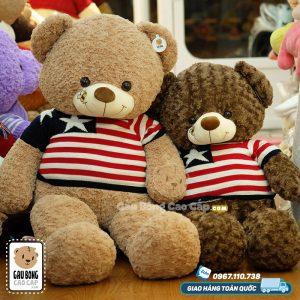 Gấu Teddy Little Bee