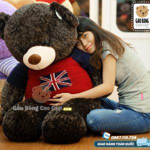 Teddy lông Layer cờ anh