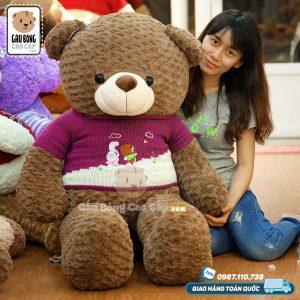 Gấu Teddy Socola áo len LINE