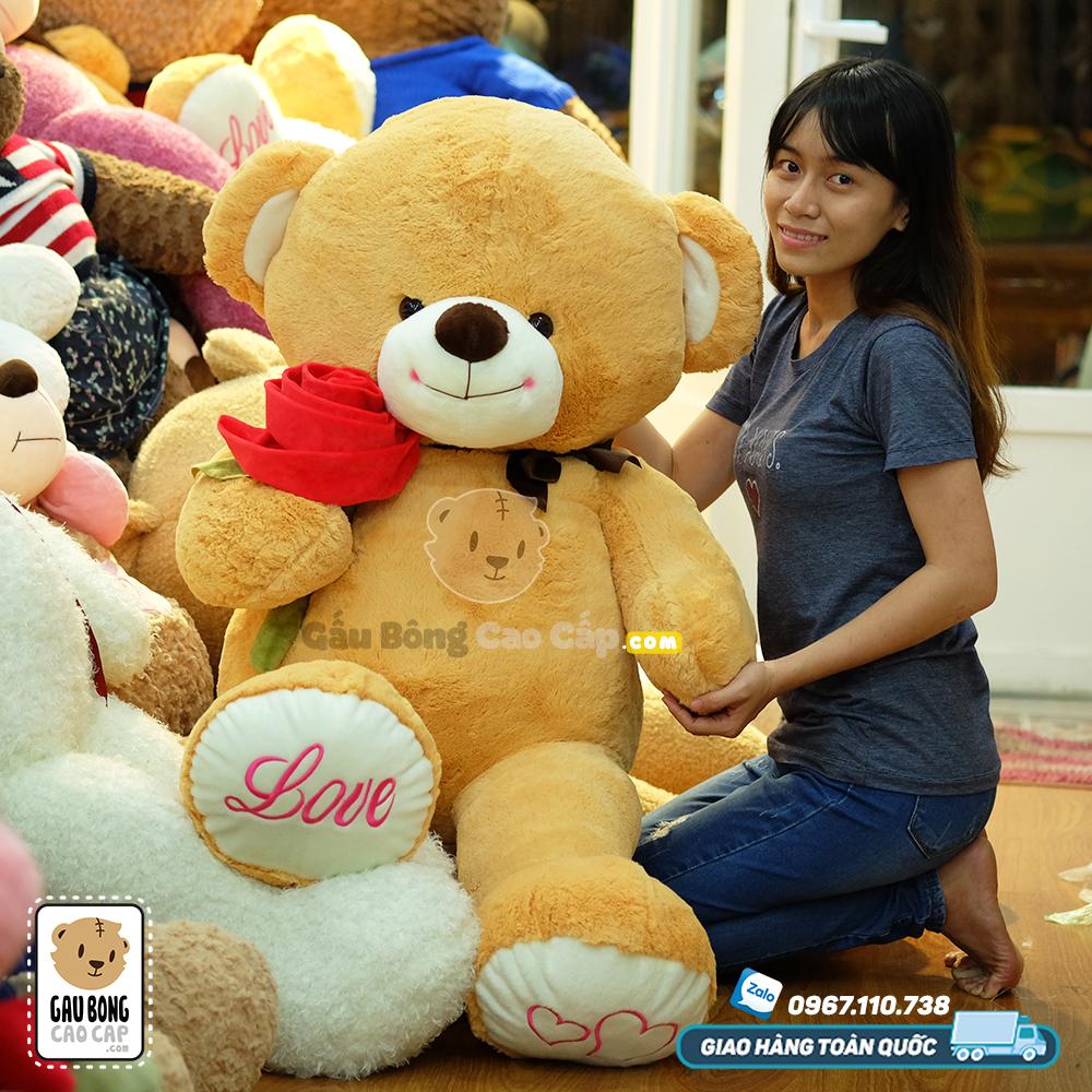 Teddy nơ nâu cầm hoa hồng