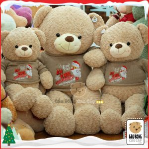 Gấu Teddy Merry Christmas (Cafe Sữa)
