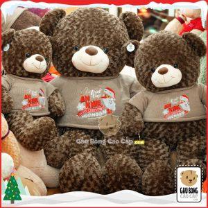 Gấu Teddy Merry Christmas (Choco)
