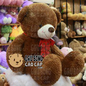 Gấu Teddy Sweet Kiss