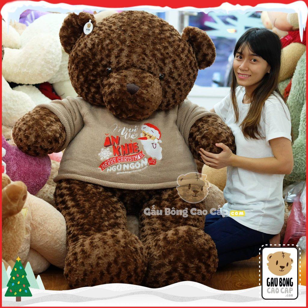 Gấu Teddy Merry Christmas (Socola)