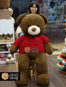 Gấu Teddy áo len lông nỉ