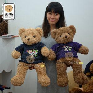 Gấu Teddy áo len cổ lọ