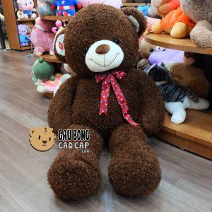Gấu Teddy Sweet Kiss – Nâu