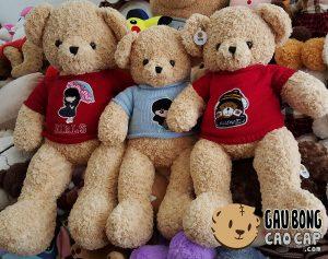 Gấu Teddy Russ áo len cổ lọ
