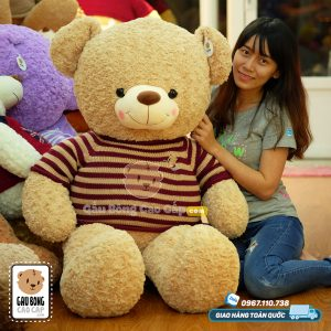 Gấu Teddy áo len Cafe Sữa - Size: 1m3