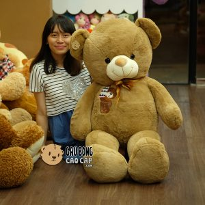 Gấu Teddy Sinh Nhật - Birthday Cake