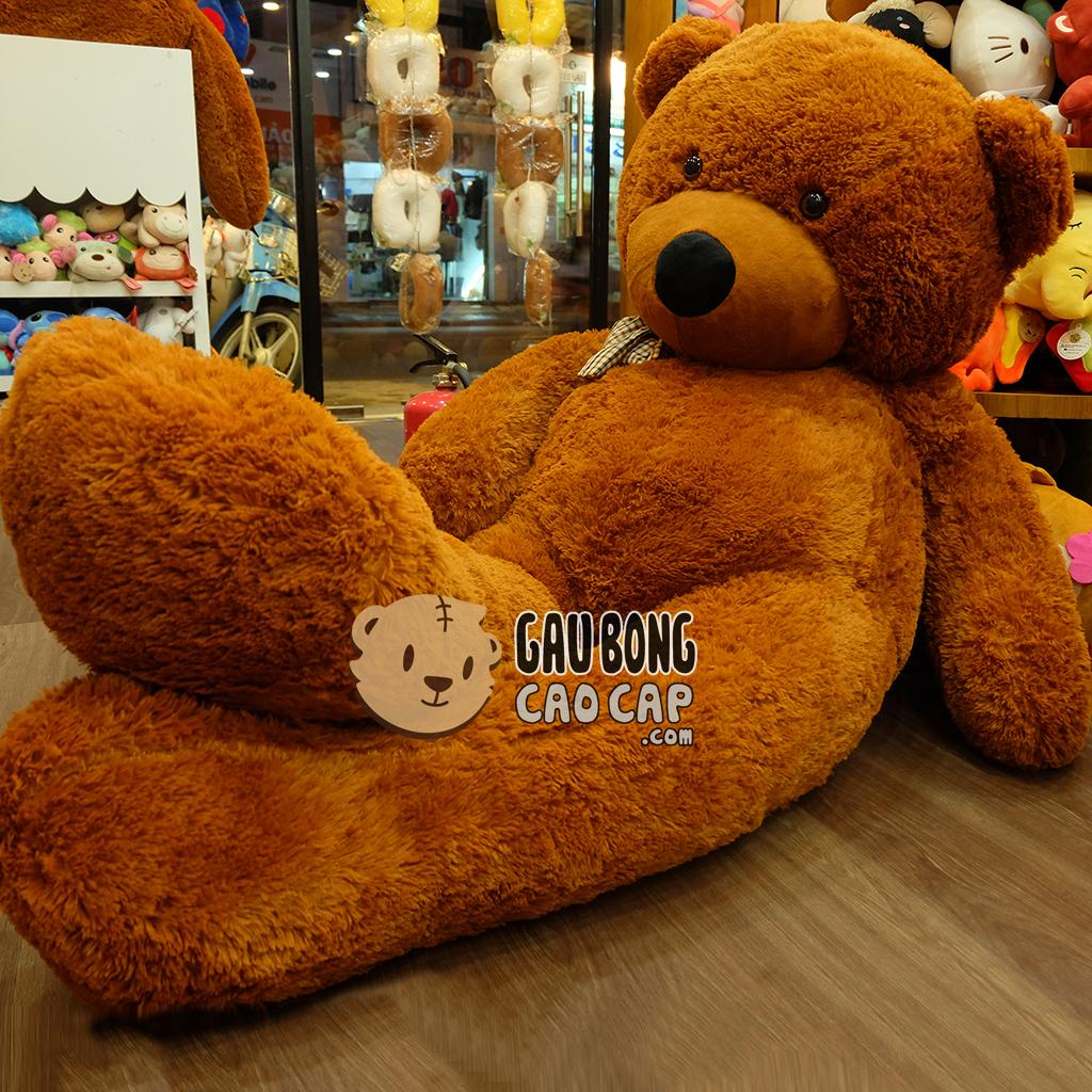 Gấu Teddy Boydz 2m