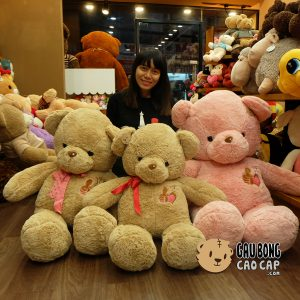 Gấu Teddy ngực tim đính hạt