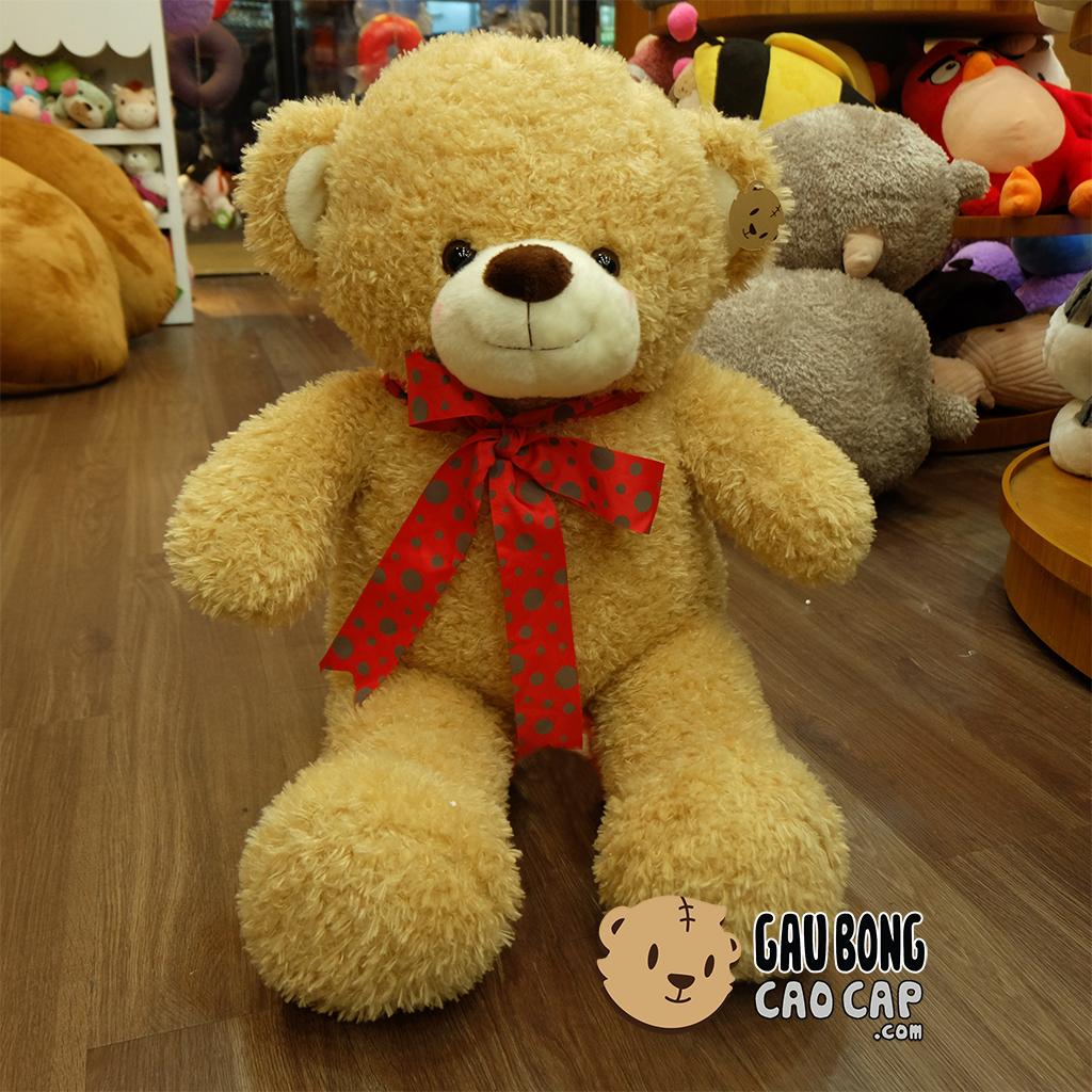 Gấu Teddy lông xù nơ chấm bi