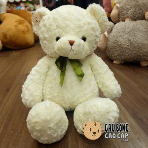 Gấu Teddy lông xoắn – Nơ Xanh lá