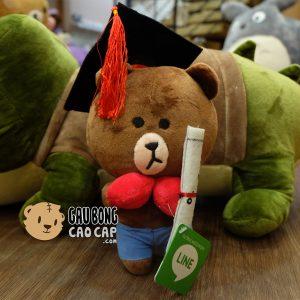 Gấu Bông Tốt Nghiệp - Brown
