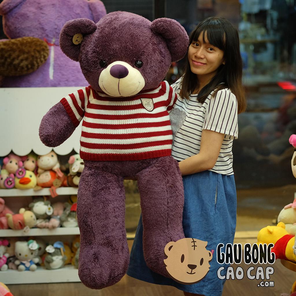 Gấu Teddy Tím áo len sọc