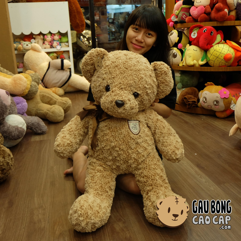 Gấu Teddy Nơ Nâu Classic