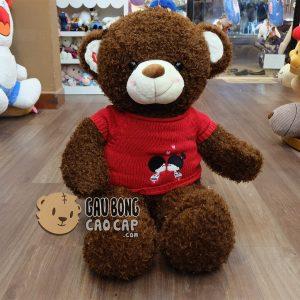 Gấu Teddy lông xù Kissing Couple