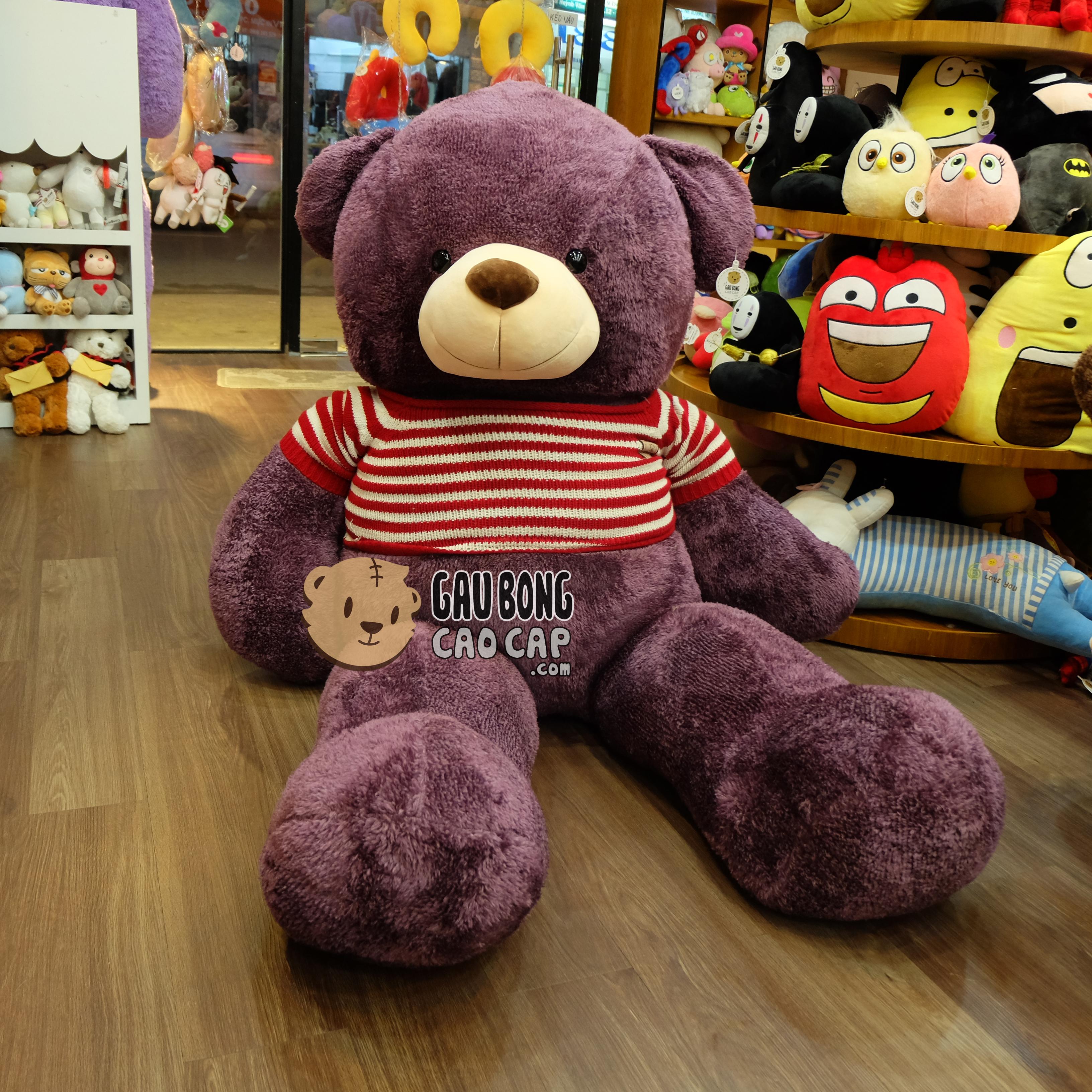 Gấu Teddy tím
