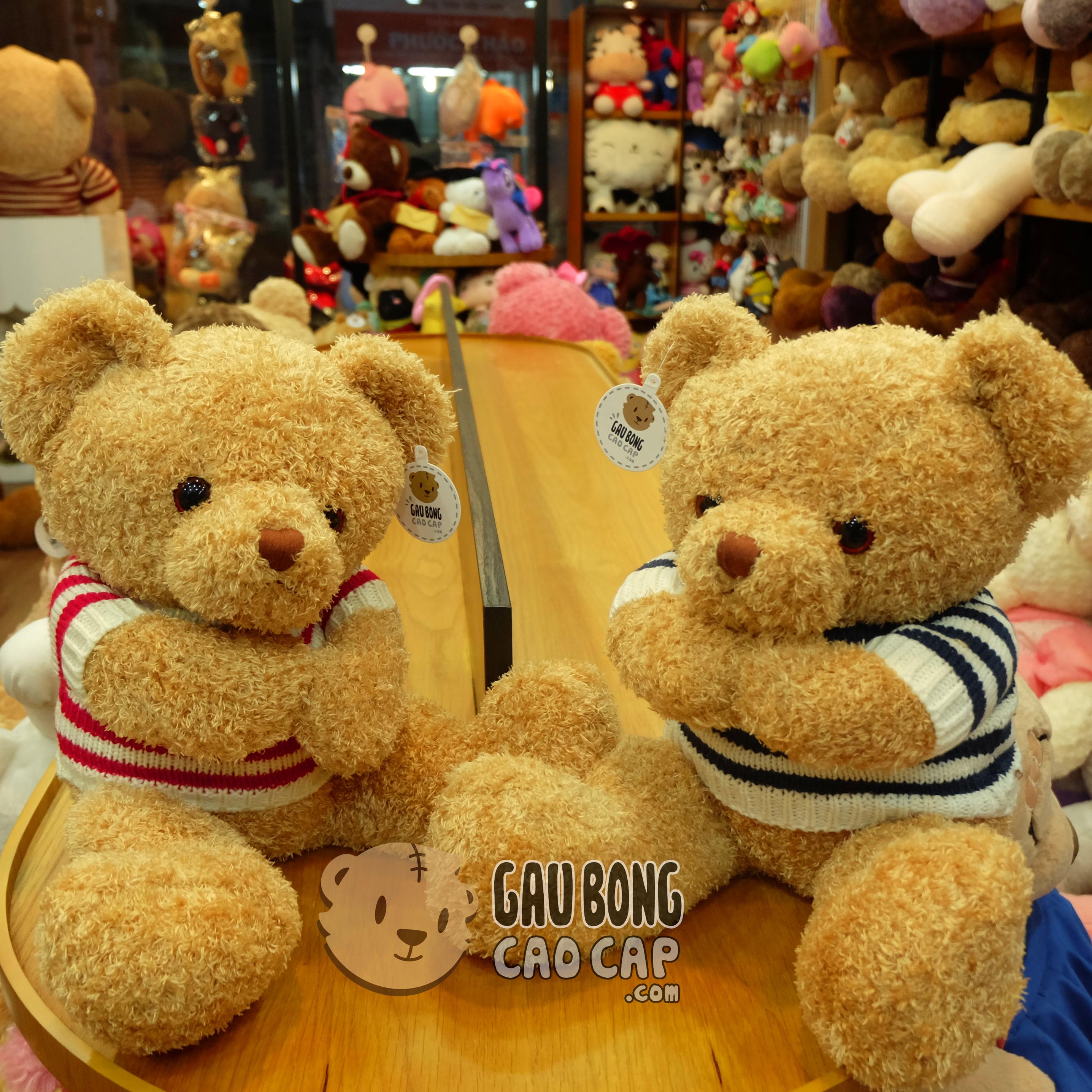Gấu Teddy áo len lông xù tay Hít