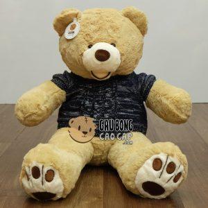 Gấu Teddy Costo mặc áo len – Vàng nhạt