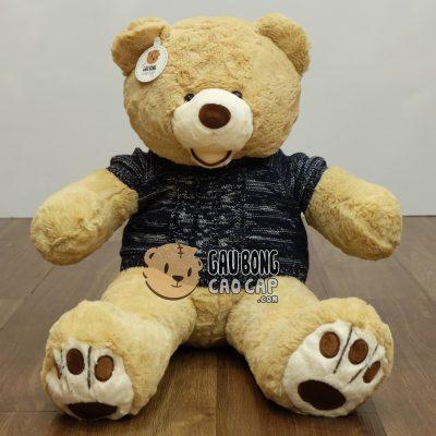 Gấu Teddy Costo mặc áo len