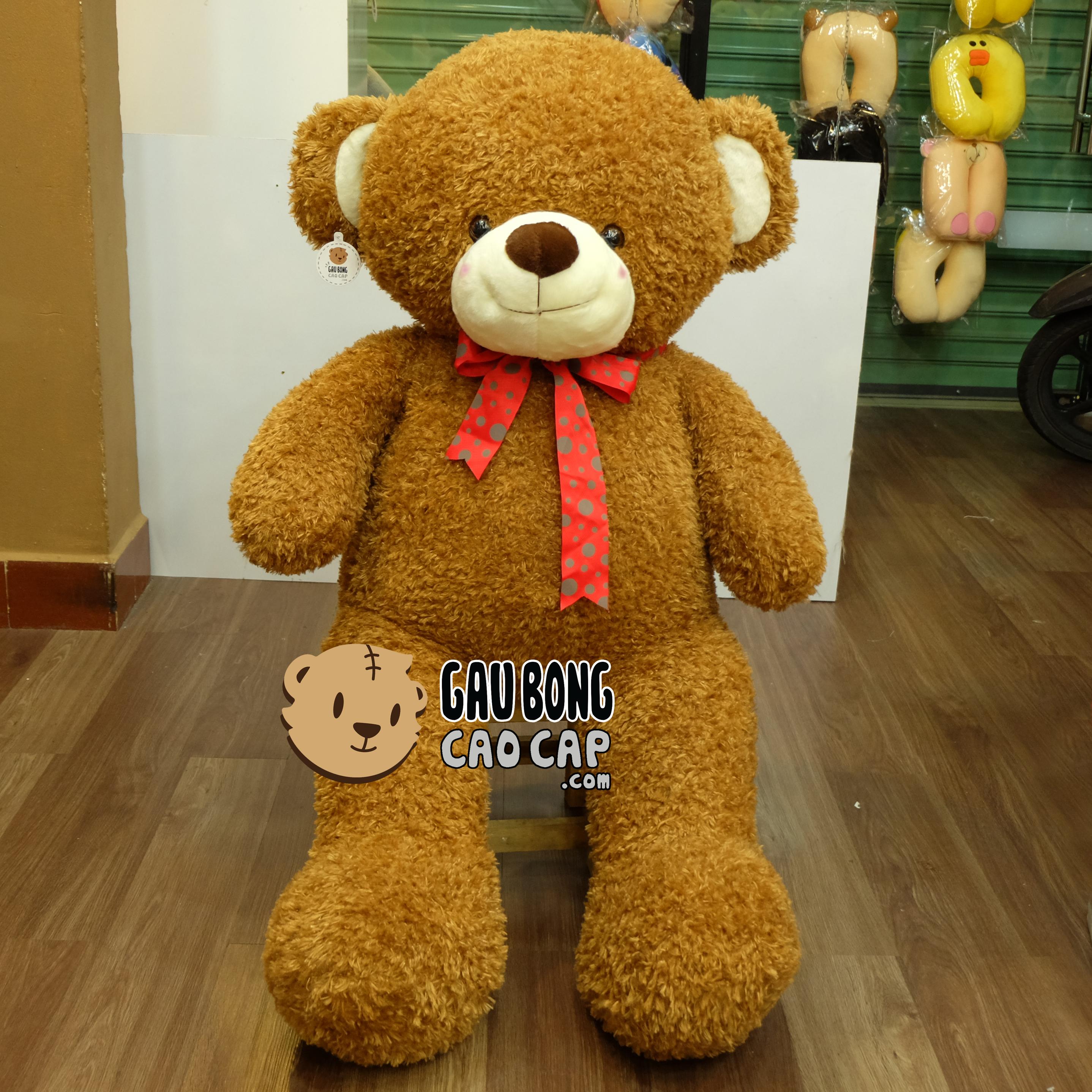 Teddy lông xù nơ chấm bi