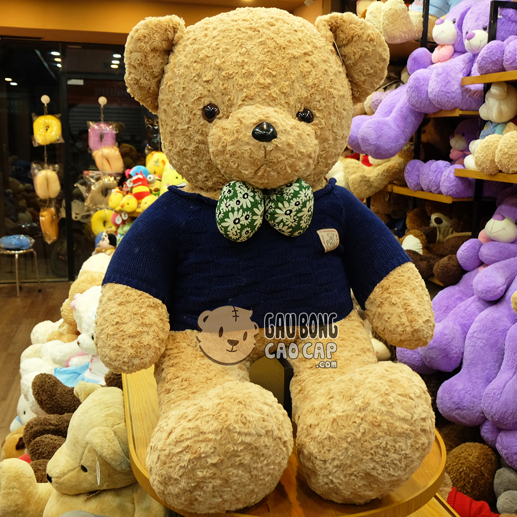 Teddy áo len xanh Navy