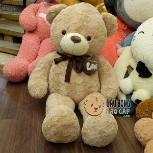Gấu Teddy nơ nâu ngực tim lông hoa hồng